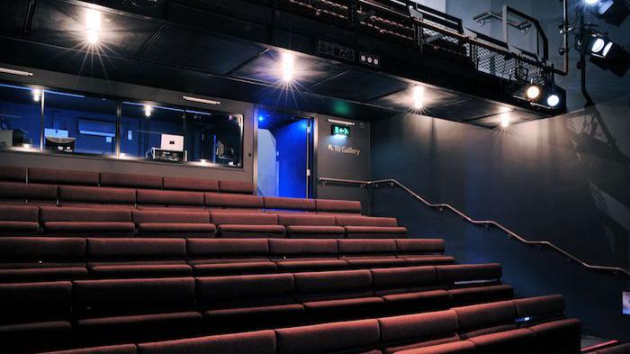 3618-Ustinov-Theatre-Internal